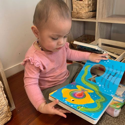 curious-cubs-early-learning-centre-Hamilton-Waikato-hilcrest-gallery-33